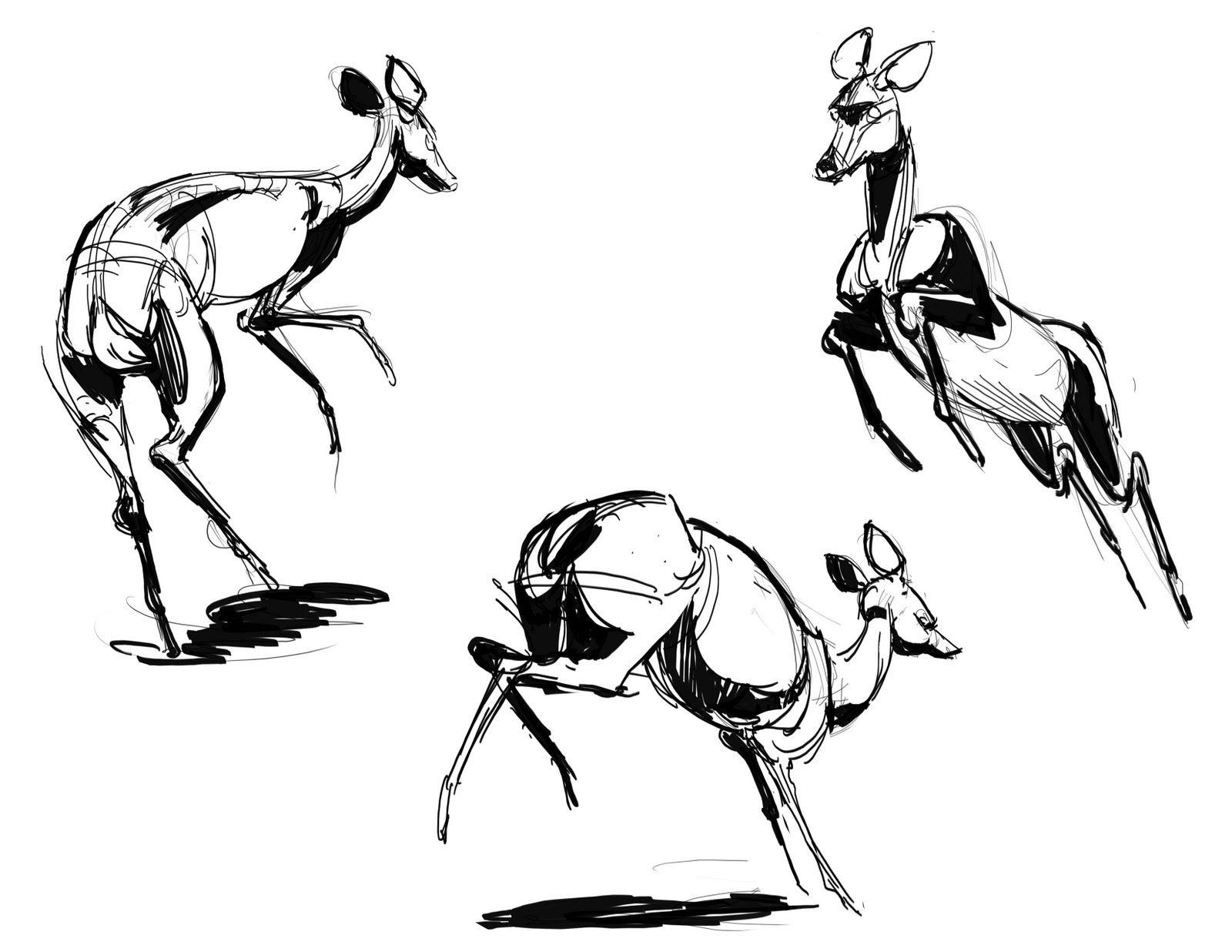 Line Drawing Deer : Deer jumping running character design referance charts
