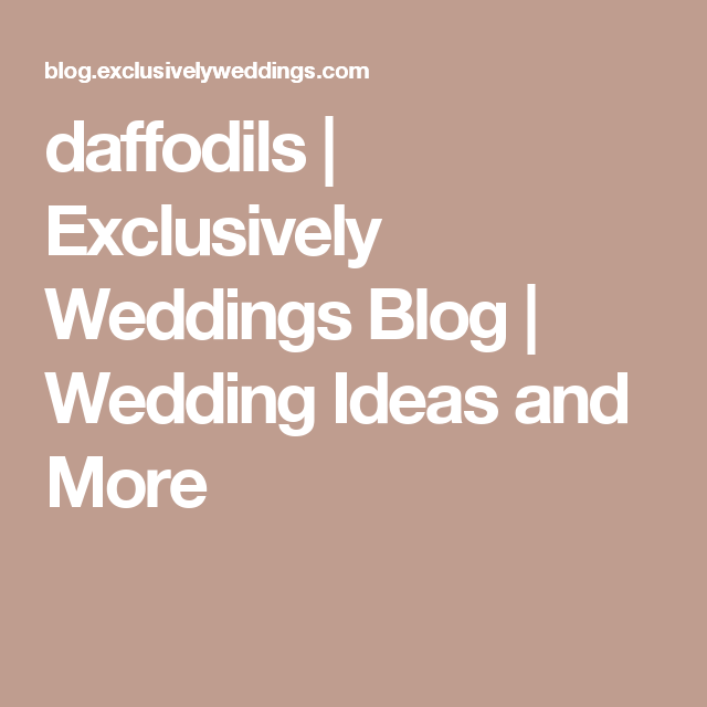 daffodils | Exclusively Weddings Blog | Wedding Ideas and More