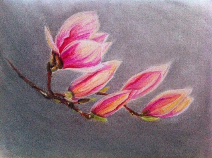 Dessin pastel fleurs - Fleurs a dessiner modele ...