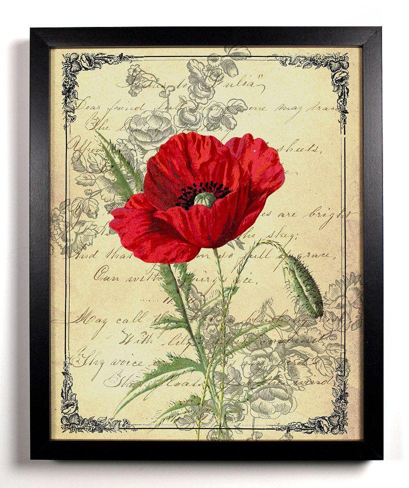 Red California Poppy, Home, Kitchen, Nursery, Bath, Dorm, Office ...