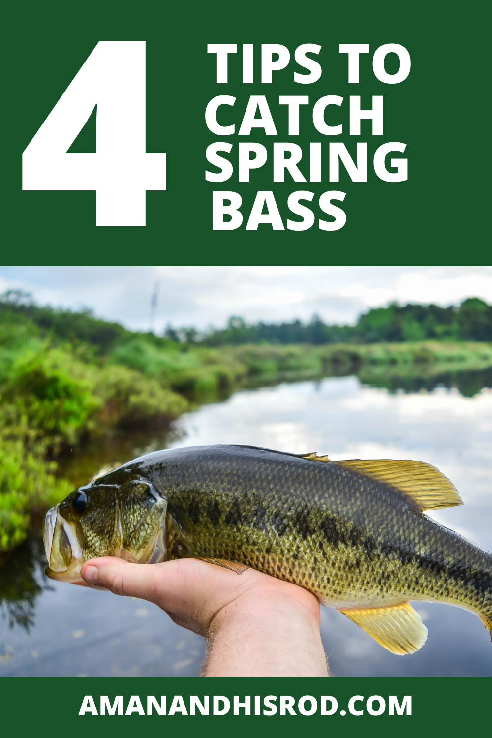 How to Catch Early Spring Bass - 4 Best Techniques in 2020 ...