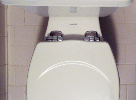 How To Replace A Toilet Seat Toilet Seat Seating Renters Solutions