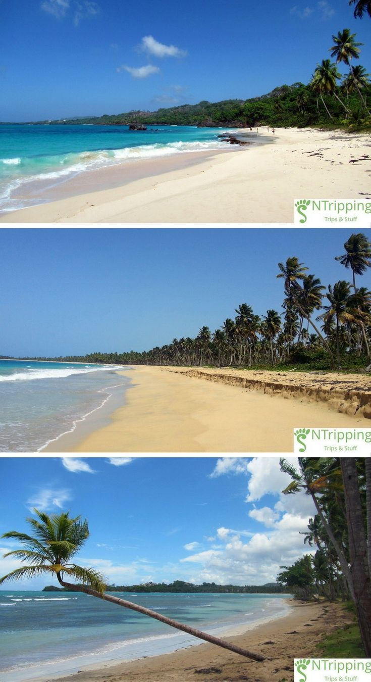 The Best 10 Secluded Dominican Republic Beaches | Palm Fringed