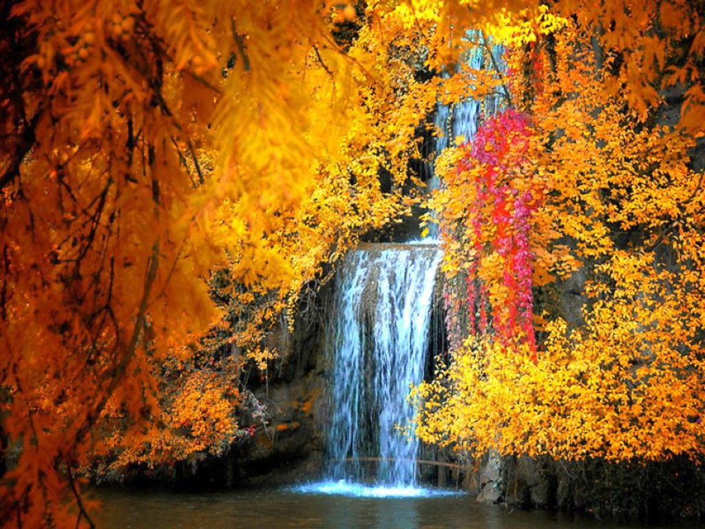 Waterfall In Autumn Autumn Scenery Fall Pictures Autumn Waterfalls