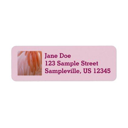 flamingo feathers pink abstract nature label pink abstract