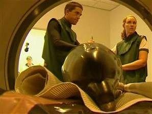 TODAY.com: Dolphin gets MRI at Australian clinic