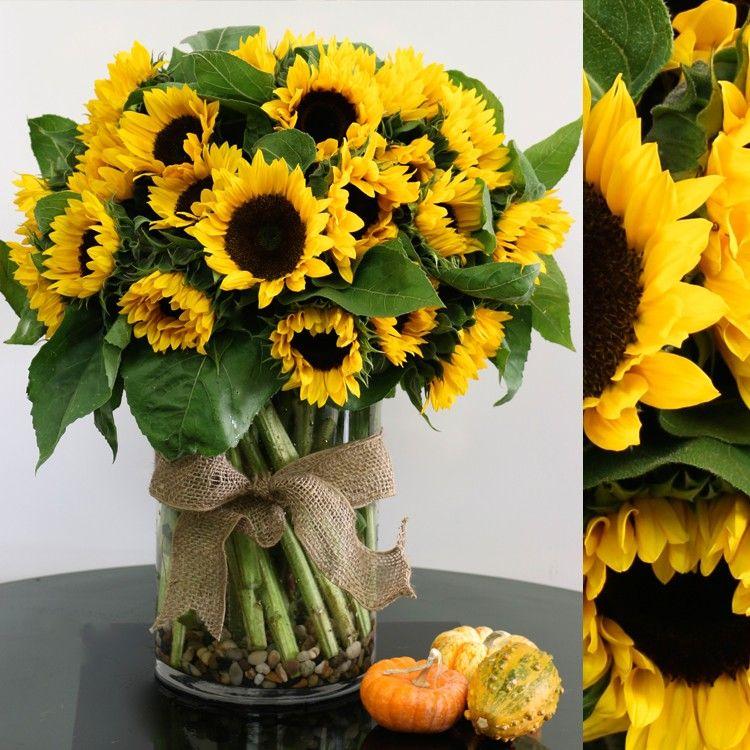 Sunny in Horton, KS The Lemon Tree Floral & Gifts