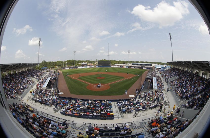 Tampa Bay Rays Spring Training Opens February 14 Tampa