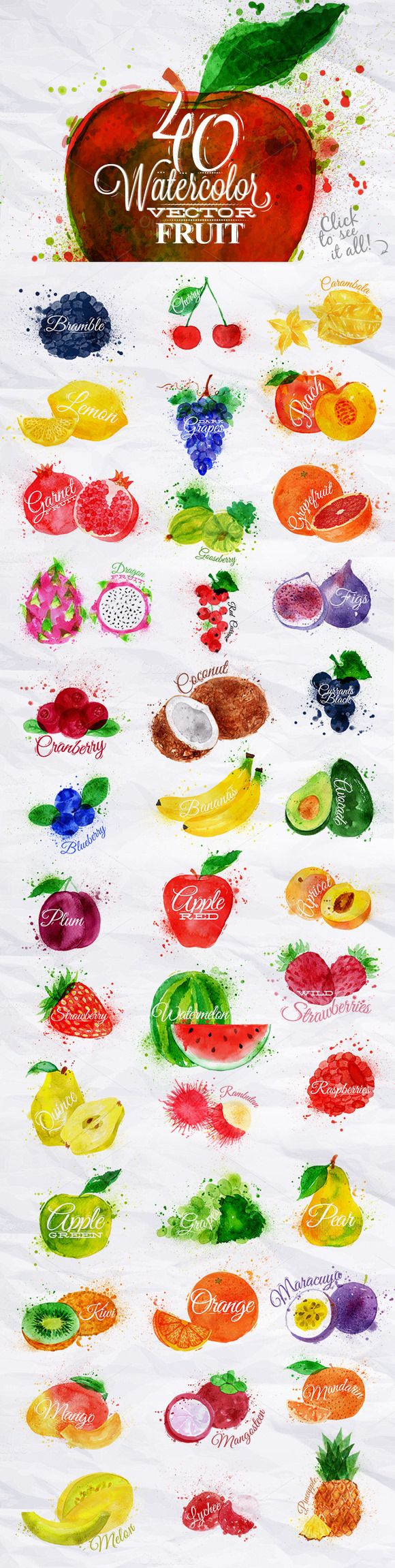 Obst mit Wasserfarben gezeichnet