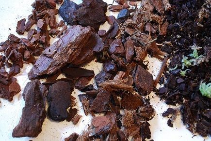 Kompost grov, 2-4 krukor. Orchidéhuset