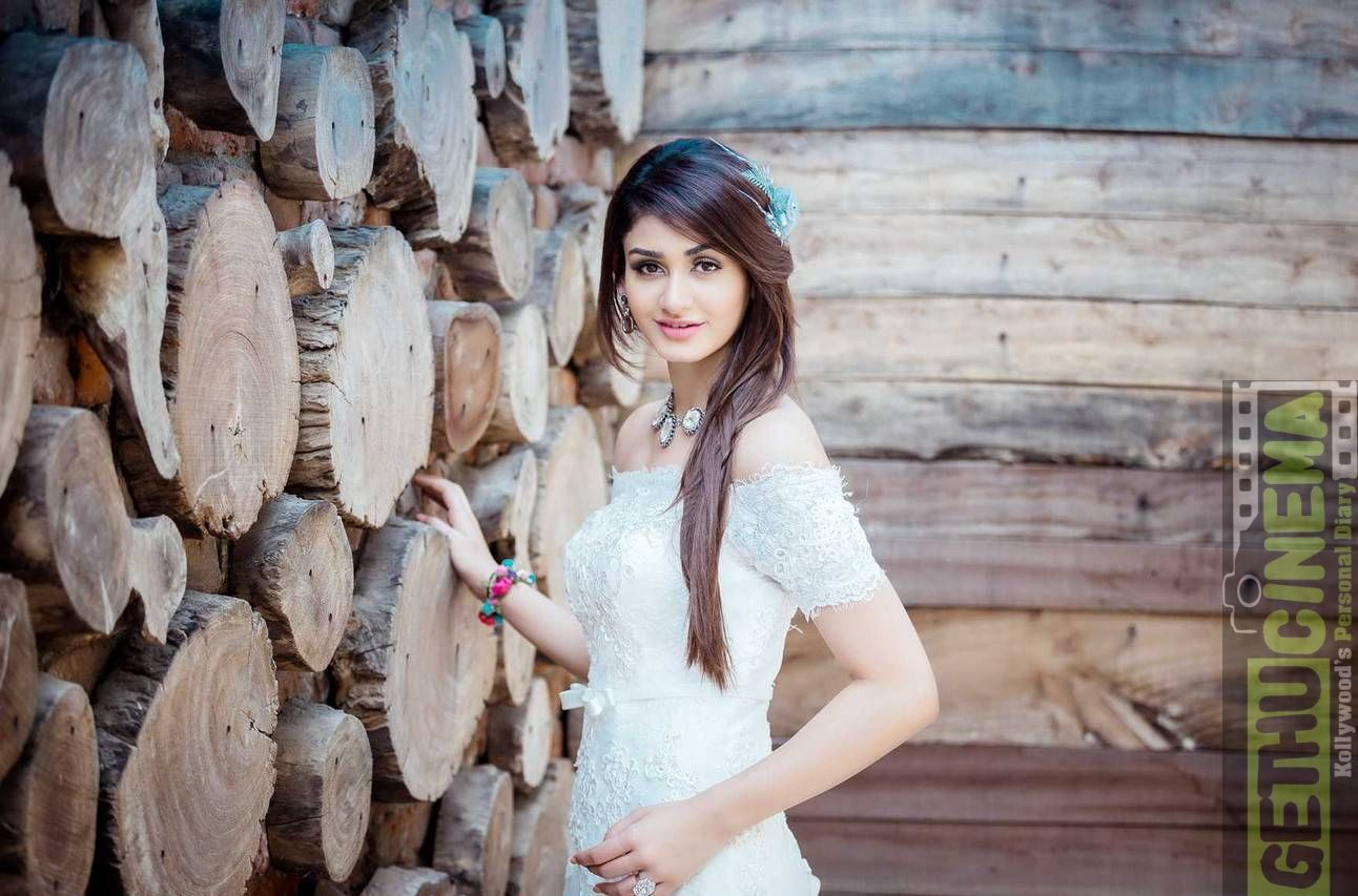 Actress Aditi Arya Recent Hd Photoshoot Gallery Actress Gallery