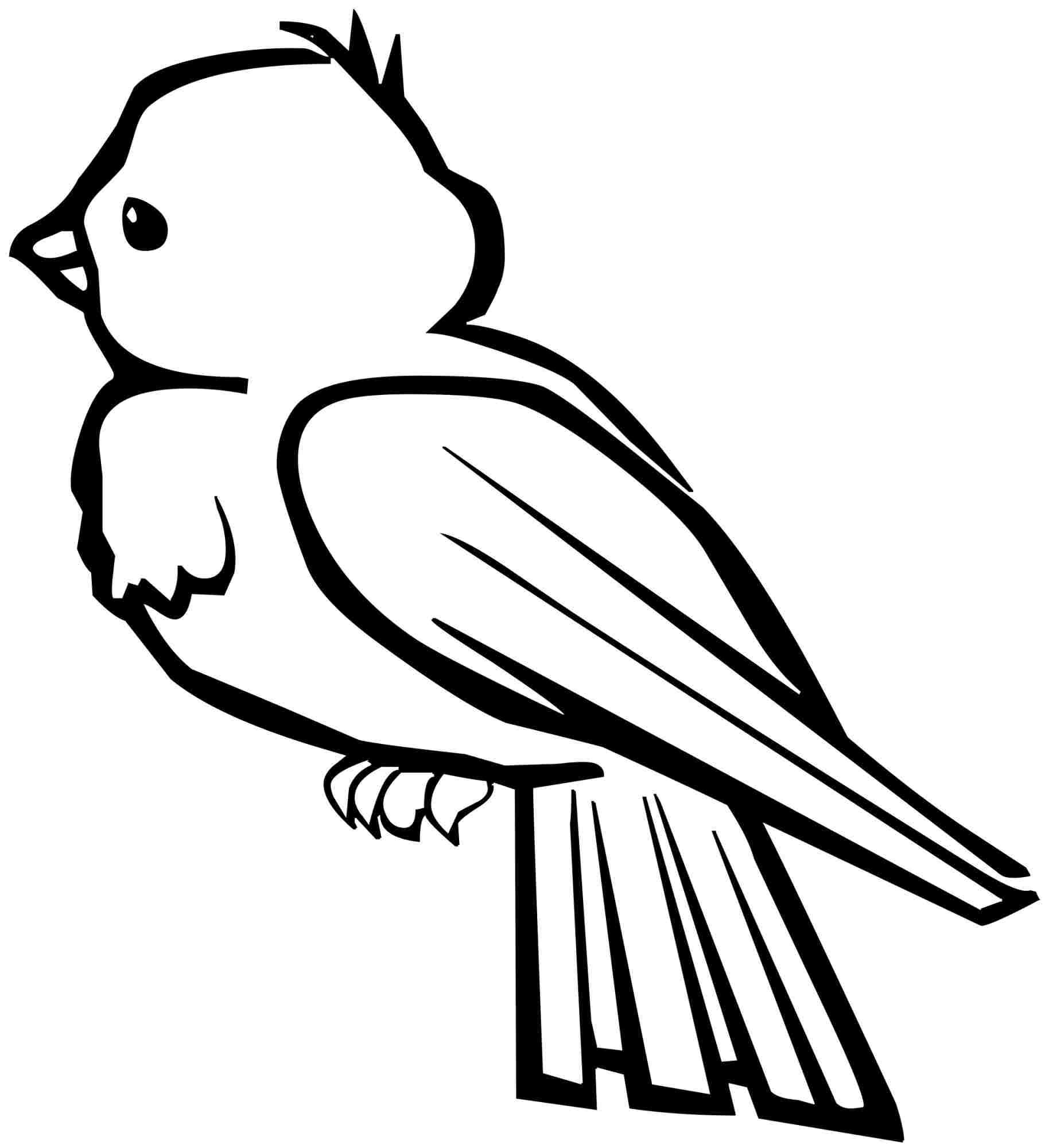 birdcoloringpage.jpg (756×538) Bird coloring pages