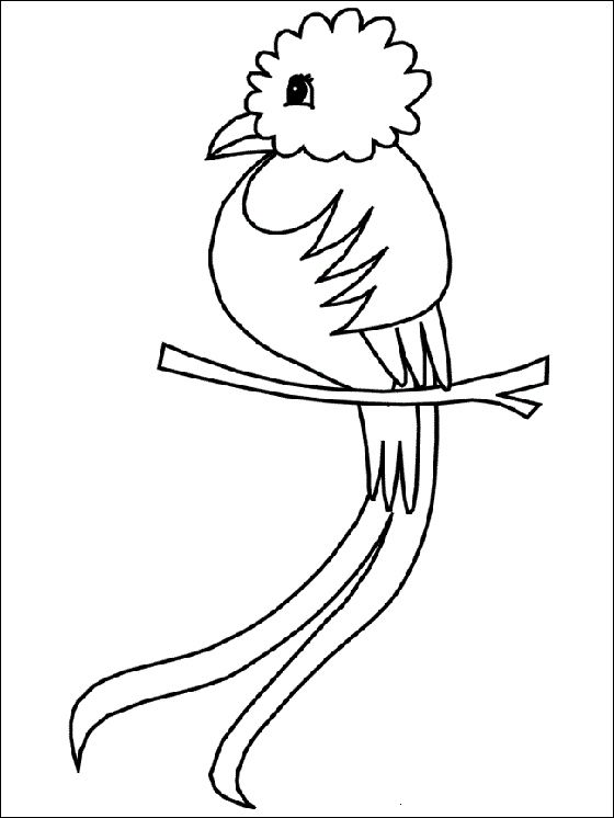Paisajes Donde Salgan Pajaros Quetzales Y Avejas Para Colorear Bird Coloring Pages Animal Coloring Pages Coloring Pages