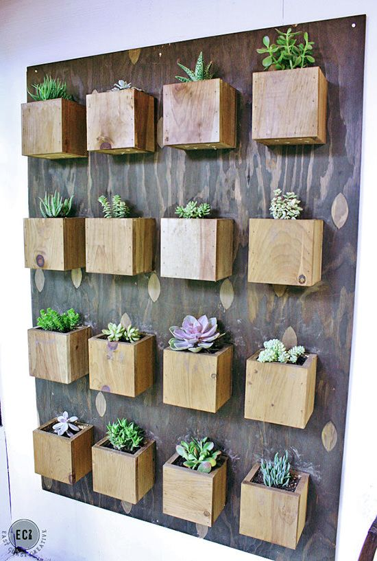 indoor cool cactus succulent projects vertical garden on indoor vertical garden wall diy id=31259
