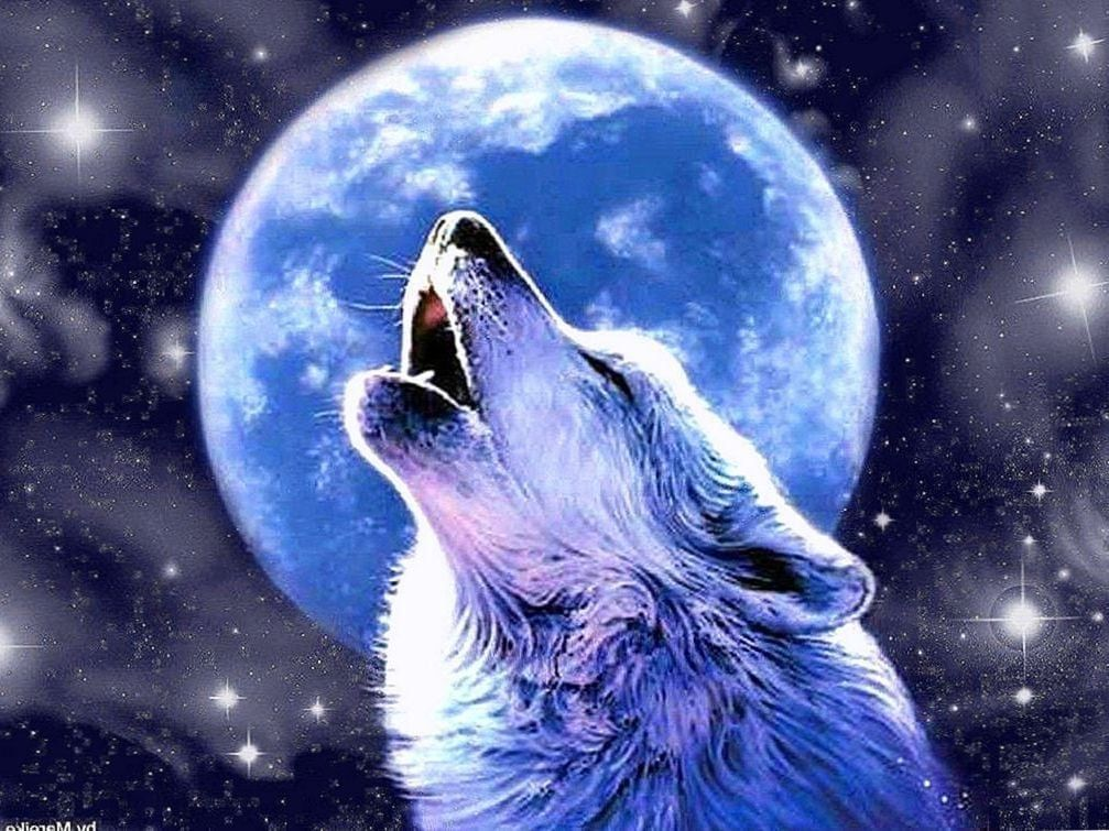 Anime Wolf Howling At The Moon Wallpapers Anime Wolf Howling At The Moon Wallpapers Wolf Howling Anime Wolf Wolf Spirit Animal