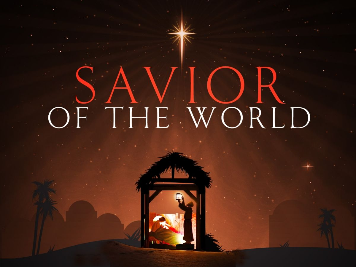 the birth of our savior jesus christ  the whole reason for