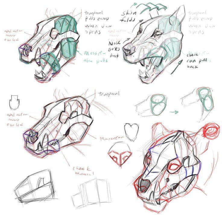 jon kuo wolf - Google Search | Animal reference | Pinterest | Wolf ...