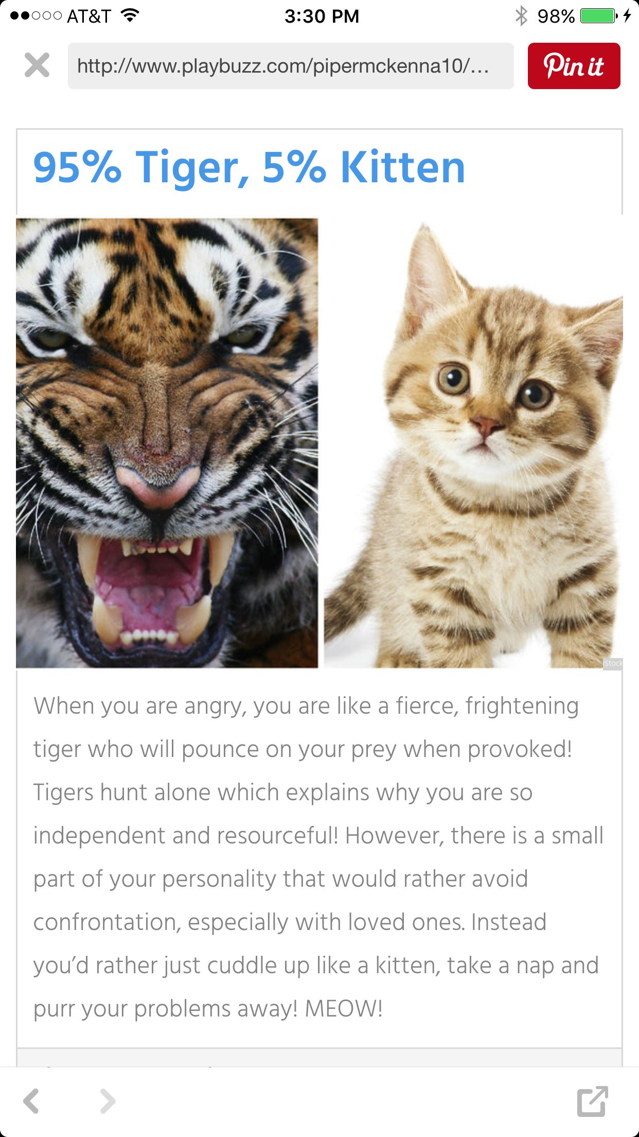 What Animal I Am When I M Angry What Animal Are You Animals Kitten