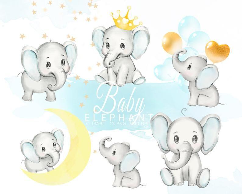 Baby Elephant Clipart Watercolor Elephant Boy Baby Shower Clip Art Elephants Illustration Little Animals Clip Art Nursery Graphics Png In 2021 Watercolor Elephant Baby Elephant Elephant Illustration