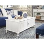 Cottage Beach White 2-Door Coffee Table, Bright White (Rubbed)