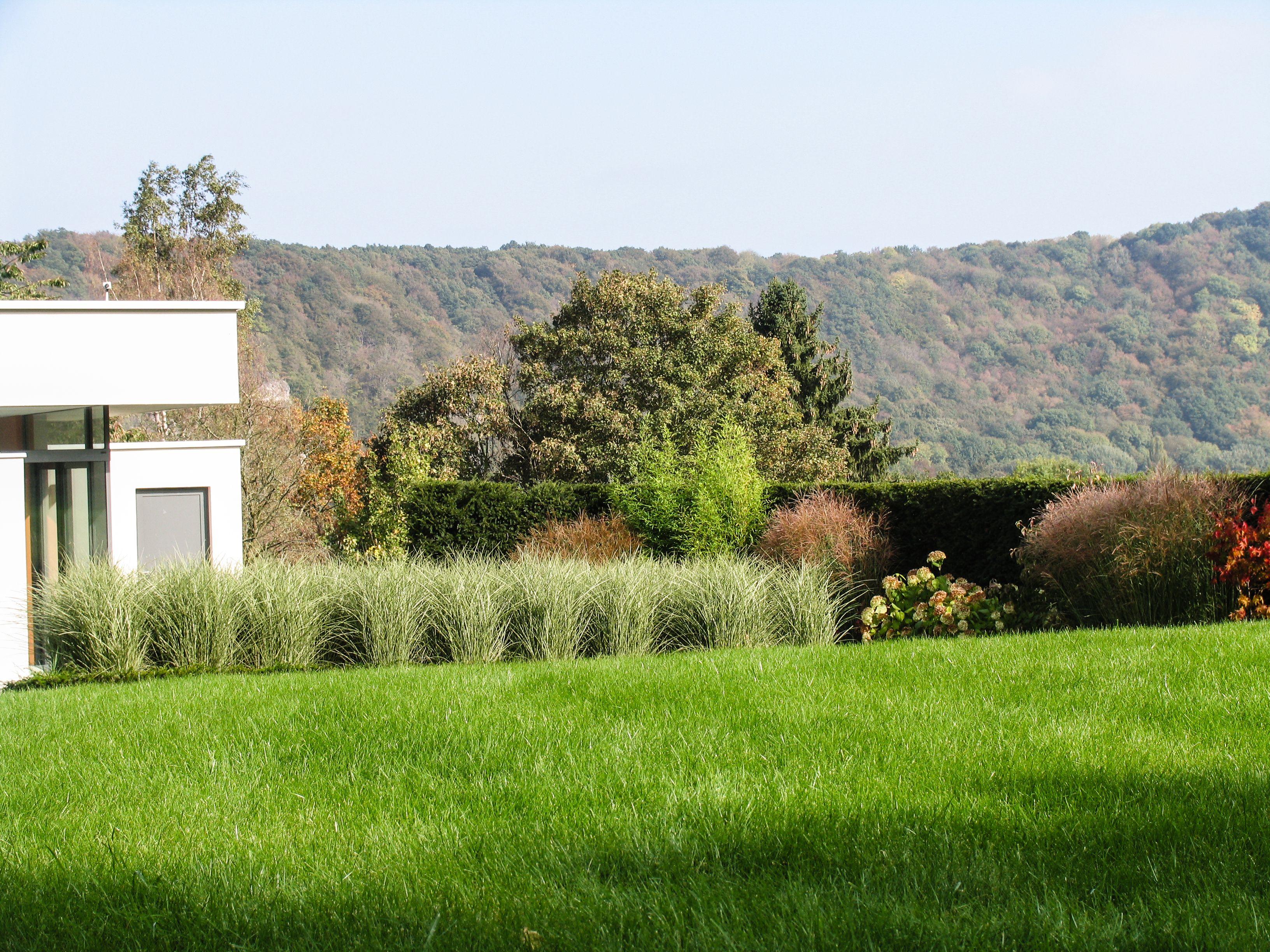 habitation contemporaine cadrage de la vue massif de gramin es my gardens pinterest gardens. Black Bedroom Furniture Sets. Home Design Ideas