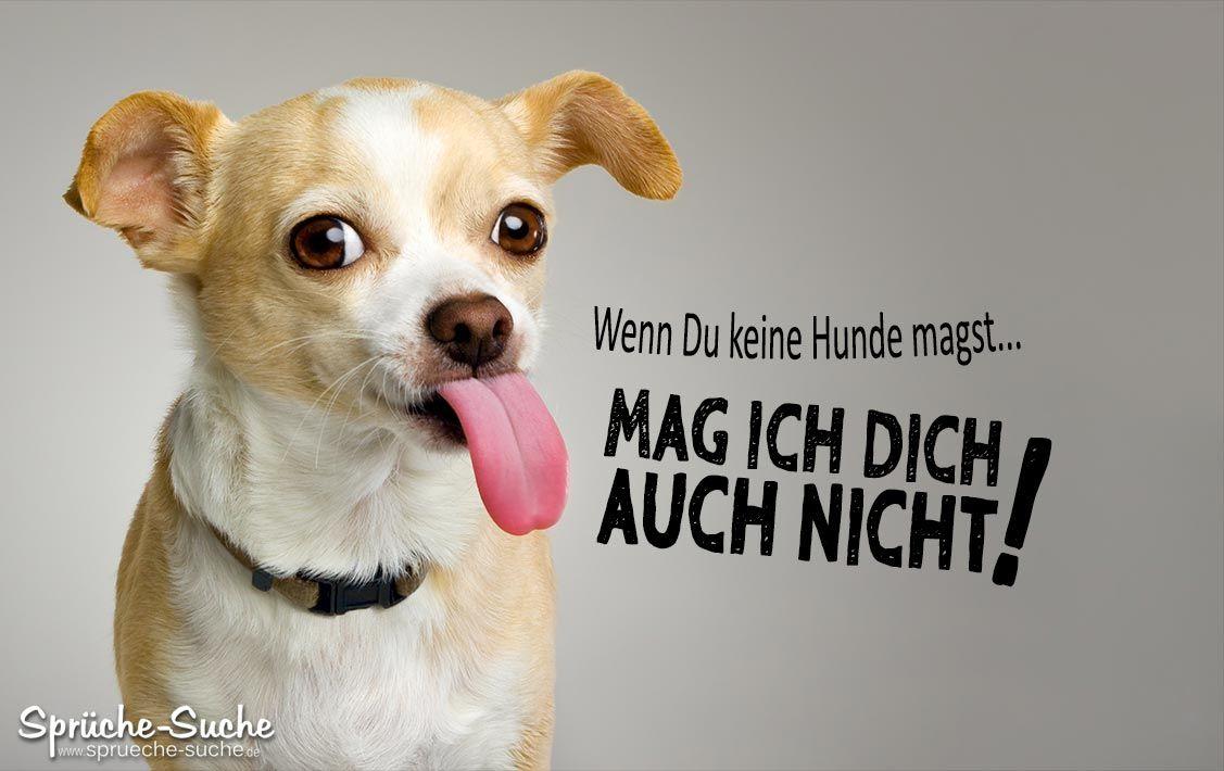 Pro Hund Lustige Spruche Fur Hundefreunde Hunde Hund Funnies Lustig