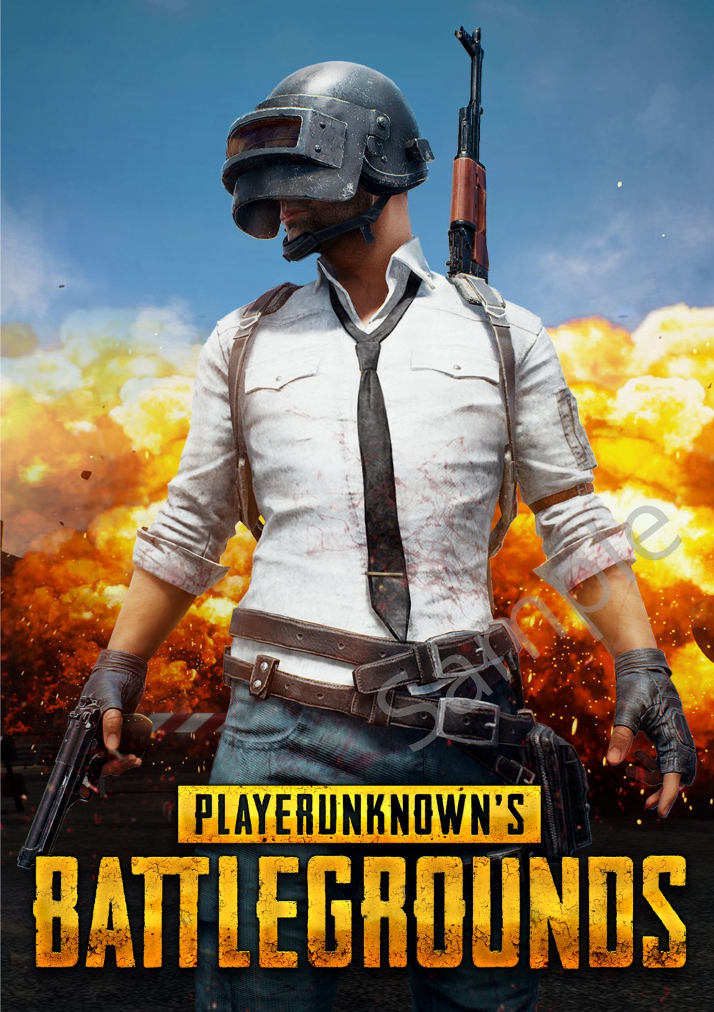 Player Unknown S Pub G Battlegrounds Game Poster