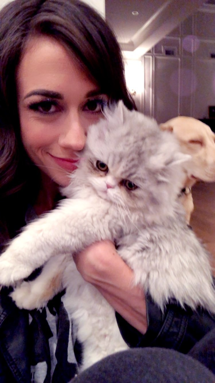 Pin By Valerie On Colleen Colleen Ballinger Animals Cats