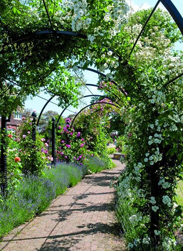 Garden Archway wwwclassic garden elementscouk Garden