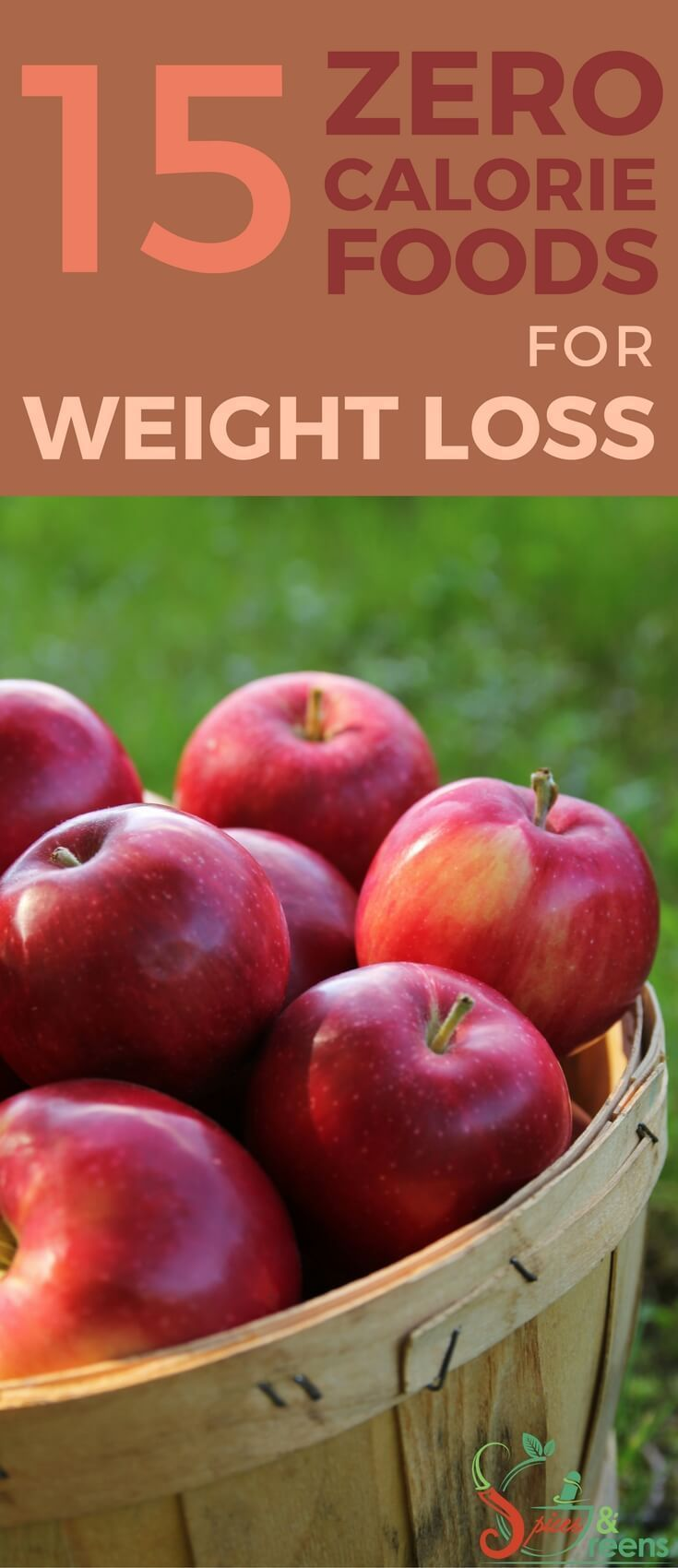 Developing a weight loss program