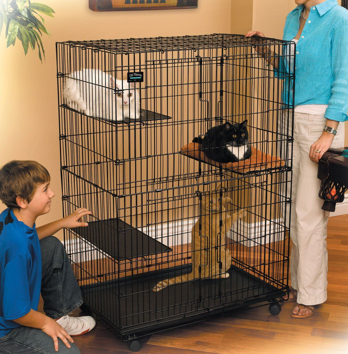 Cat Kitten Playpen Crate Cage Kennel Home Sanctuary Portable Foldable Steel  New   ShopMonkeez   1