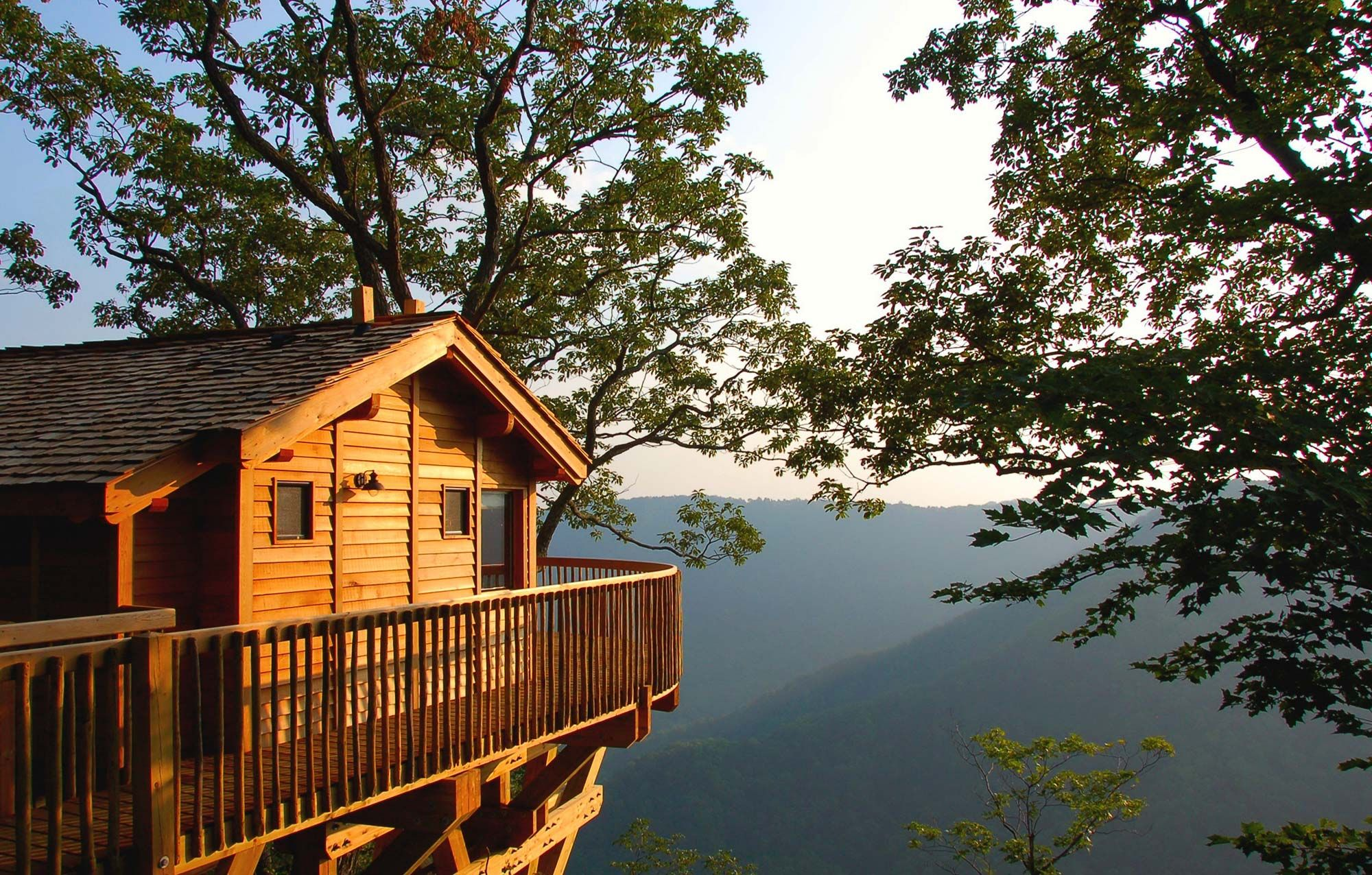 The Golden Eagle Tree House  Primland The Golden Eagle