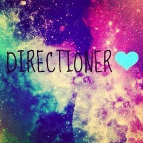 <3 Directioner