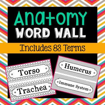 83 Anatomy Science Vocabulary Word Wall Terms with EDITABLE Cards ...