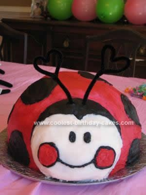 Homemade Ladybug Birthday Cake I Used My Largest Mixing Bowl To Cook This In Choose Any Of Yours That You Think Would Be A