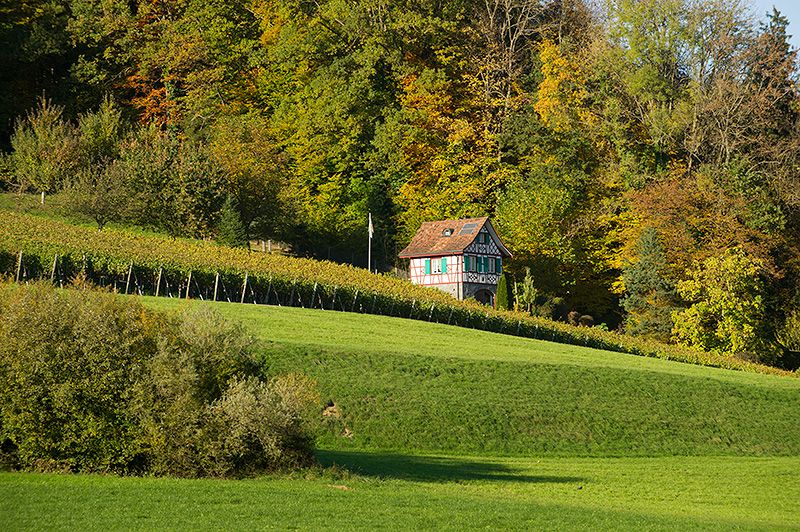 Rebhaus im Lauchetal im Kanton Thurgau (Schweiz)