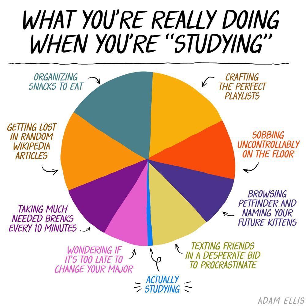 Pin By Andrea Cordova On Some Fun Studying Memes University Memes Student Memes