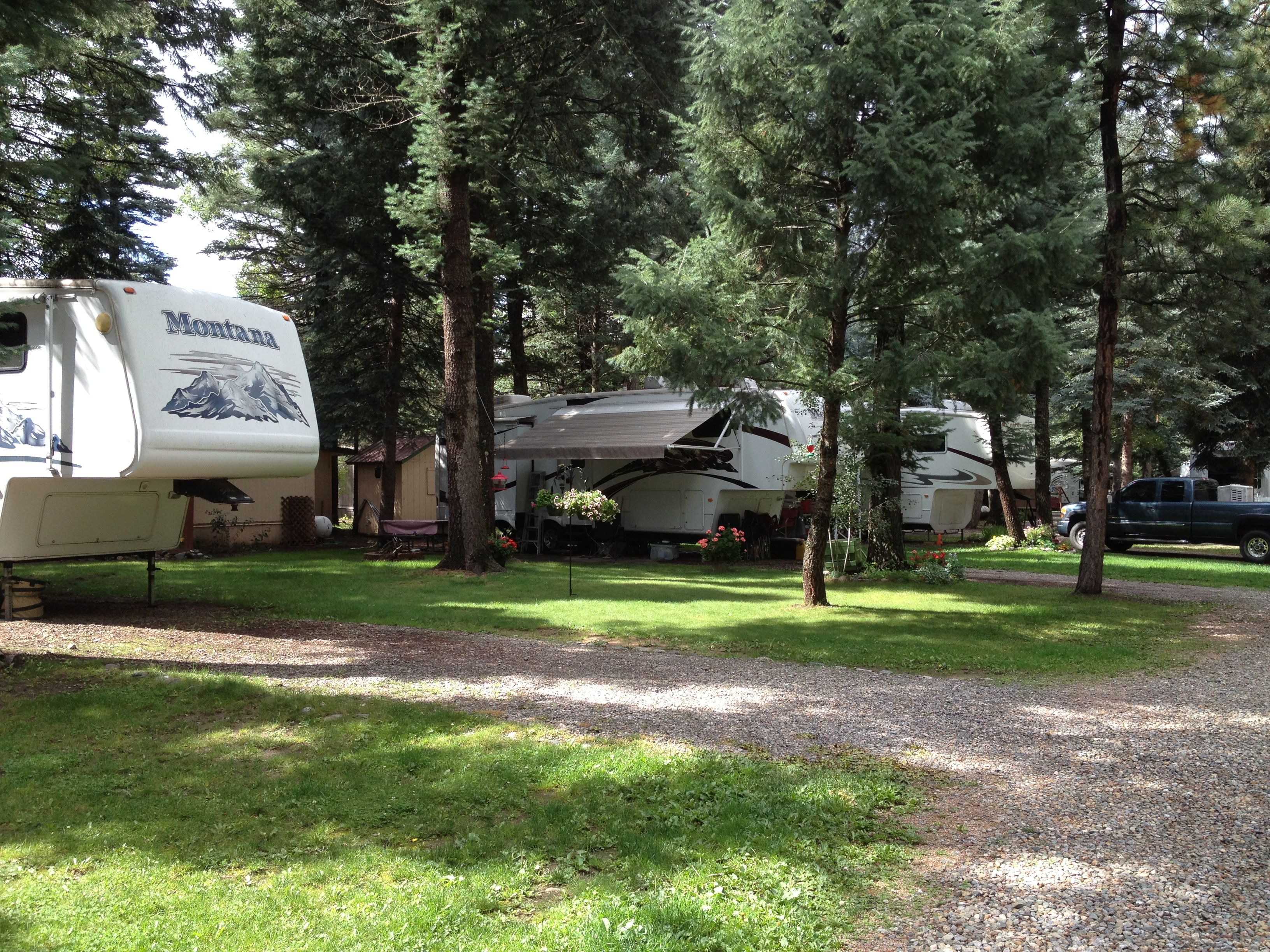 Pin By Tina Schramme On Colorado Rv Parks Types Of Christmas Trees Park