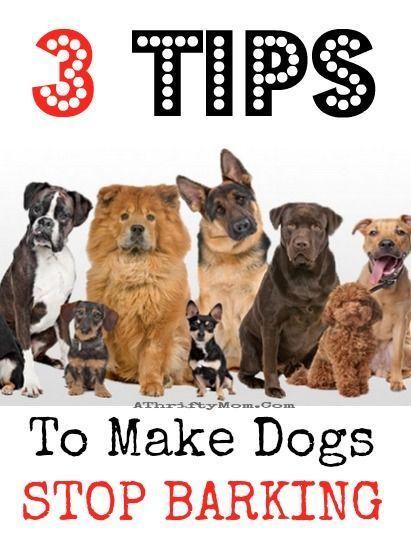 3 Tips To Make Dogs Stop Barking Pets Hacks Dog Training