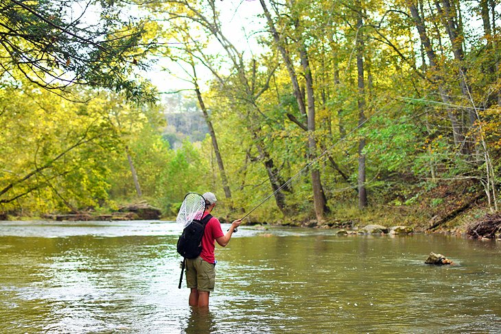 10 Top Rated Rivers Lakes For Trout Fishing In West Virginia Planetware Summersville Lake West Virginia Fly Fishing