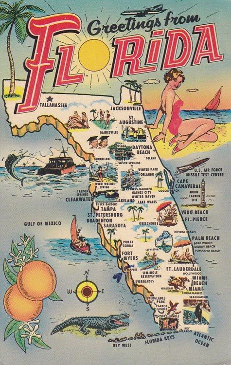 Greetings From Florida Map Postcard Illustrated With Scenic