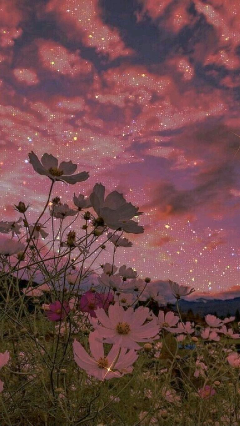 wallpapers rosa brillosos😍