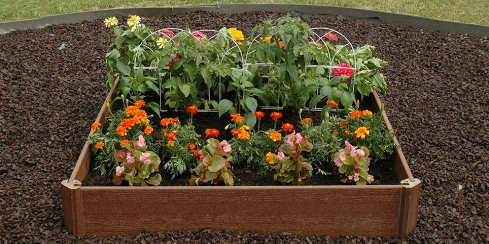 Raised Garden Beds Are the Answer to Your Backyard's Poor