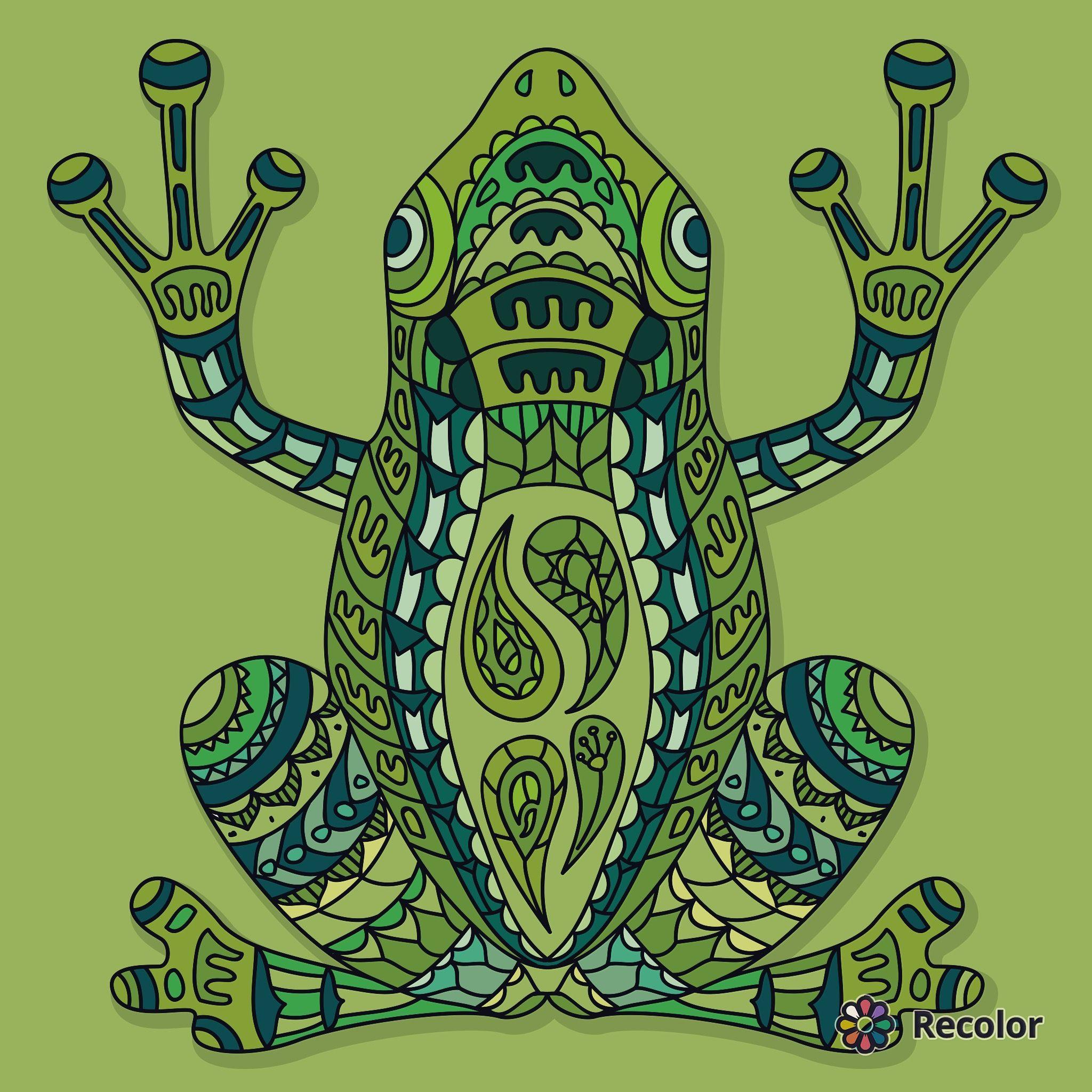 Green Frog Zentangle Art