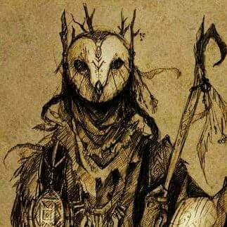 Owl shaman