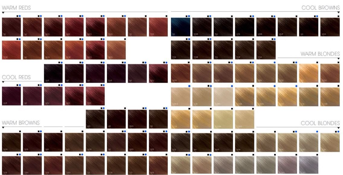 Maybe Next Time Try 9gn Or 8g Hair Color Chart Goldwell Color Chart Chrome Hair Color