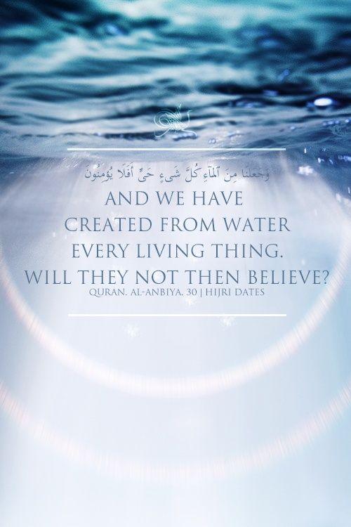 Islamic Quotes Quran Islamic Teachings Islam And Science
