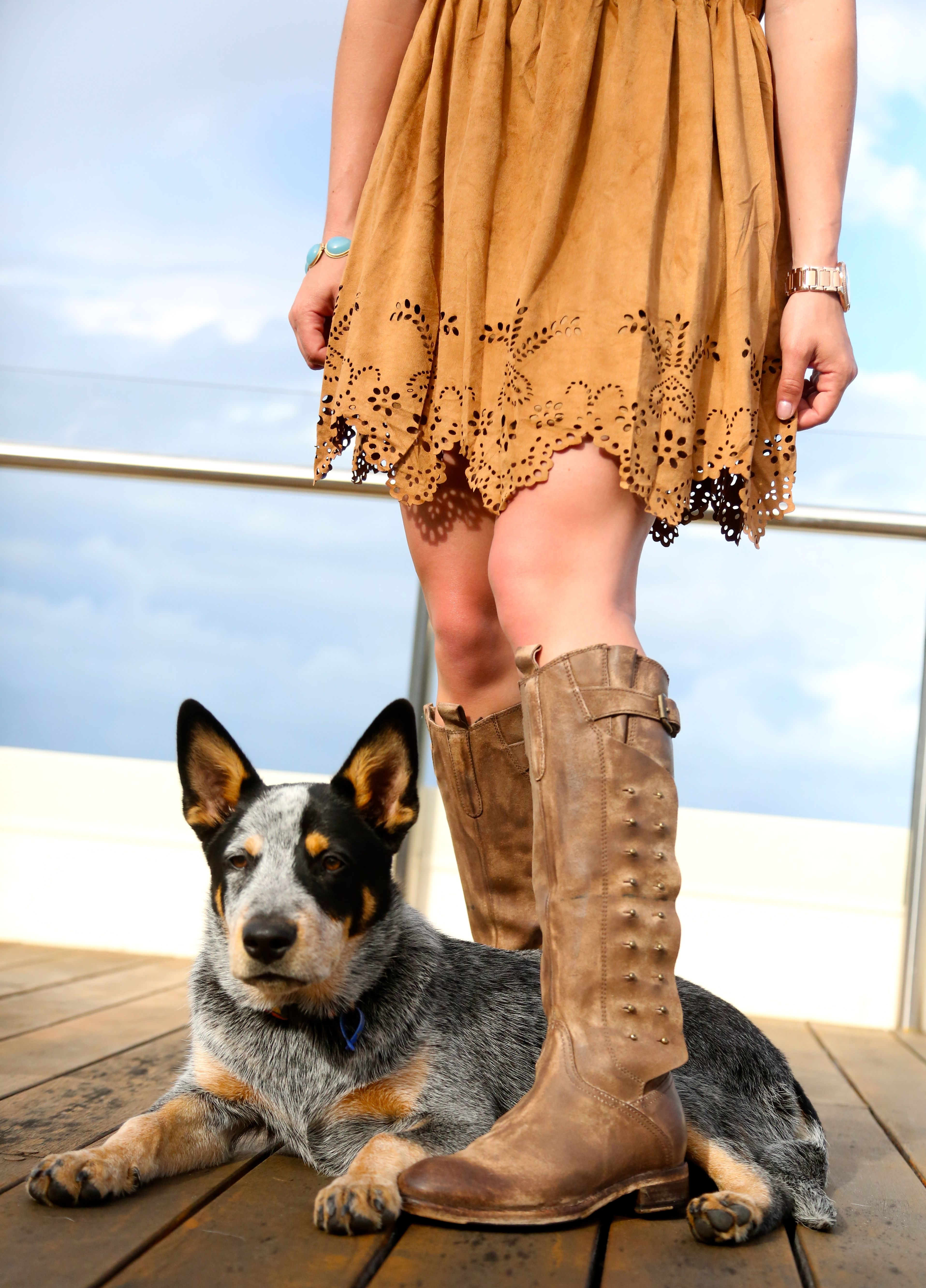 dog and boots...go hand in hand Sure miss my cattle dog