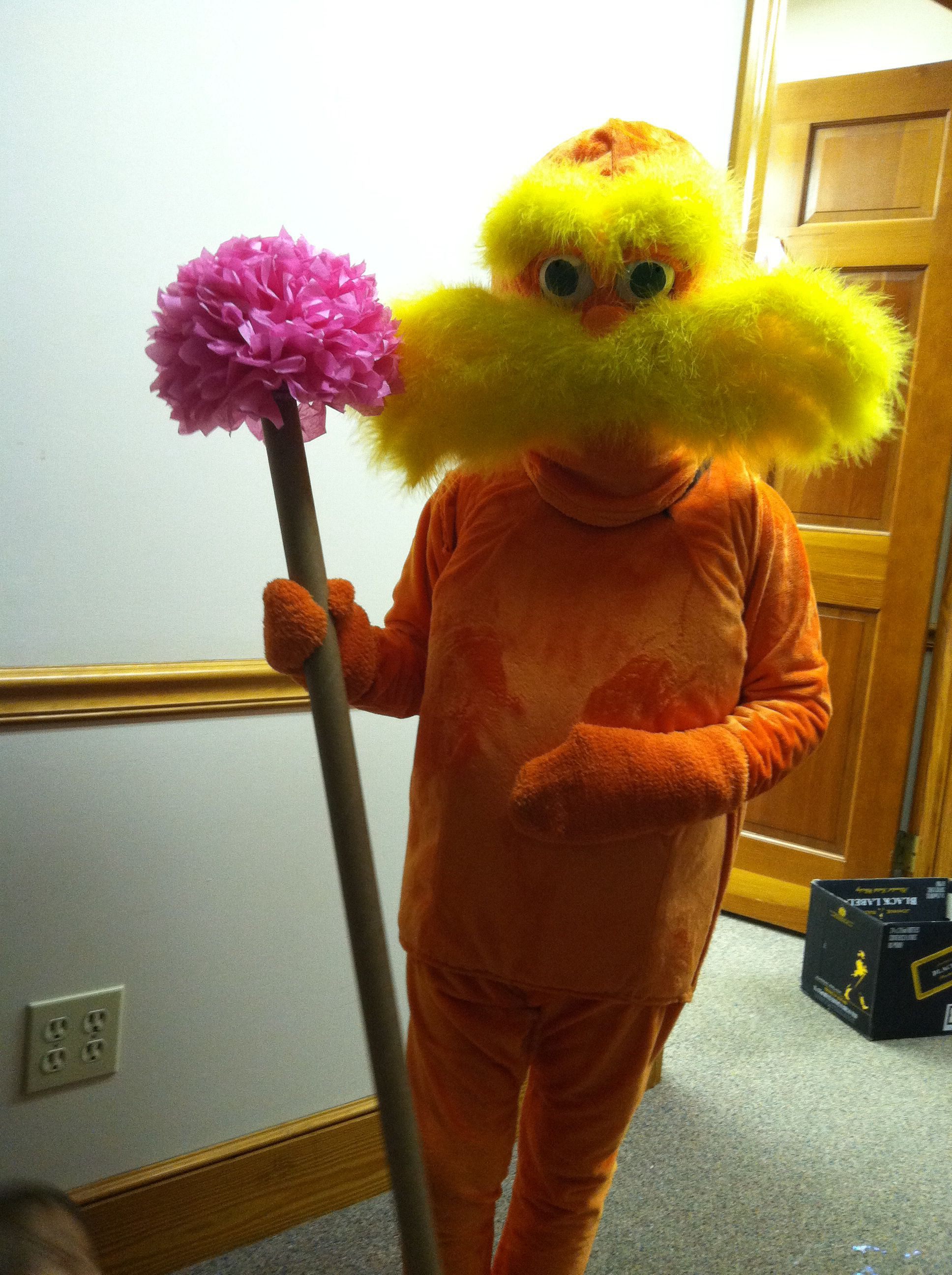 I Made A Lorax For My 9 Years Old Daughter She Wore It At The Character Character Halloween Costumes Diy Halloween Costumes For Kids Fairy Halloween Costumes