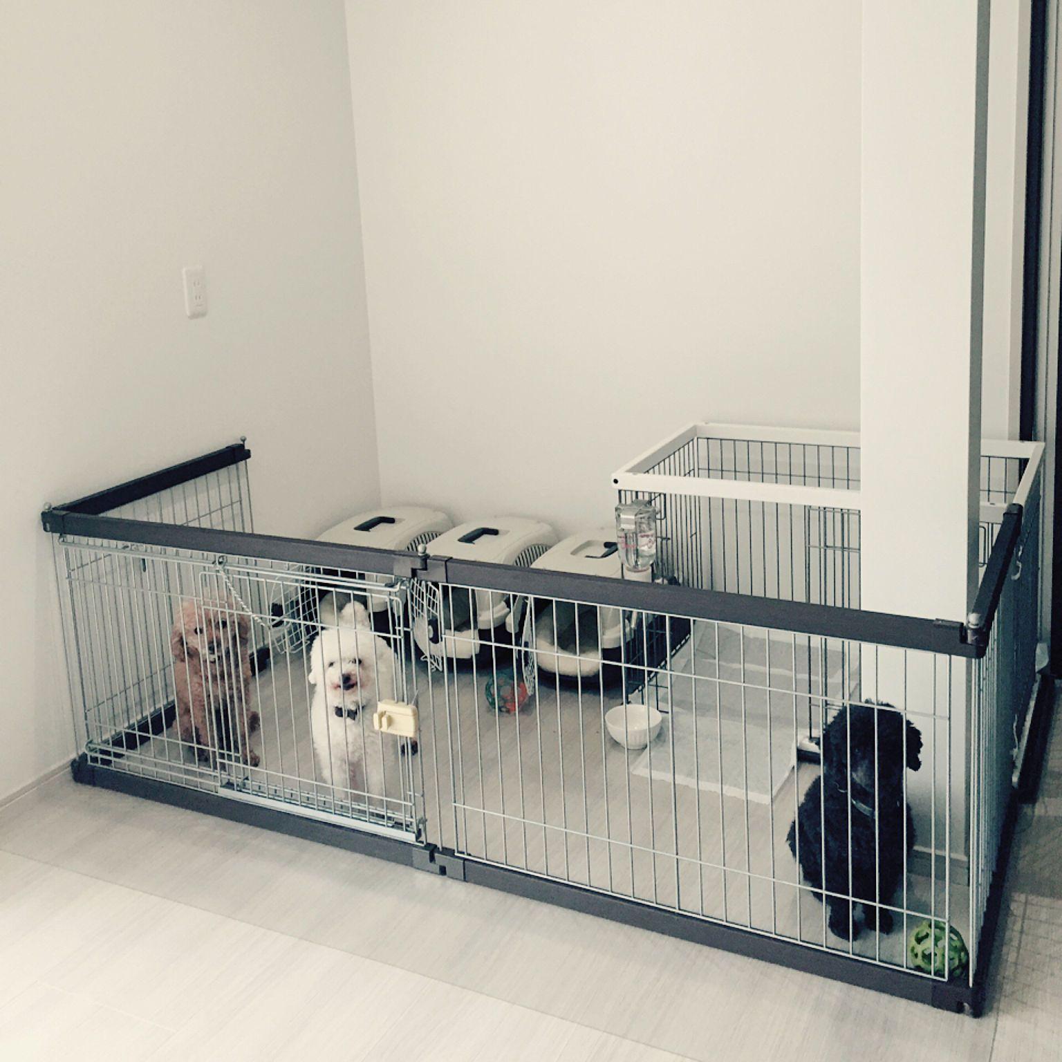 リビング リフォーム 増築 多頭飼い ワンコスペース などのインテリア実例 2017 11 04 15 12 52 Roomclip ルームクリップ 犬のケージアイデア 犬の部屋 犬のスペース